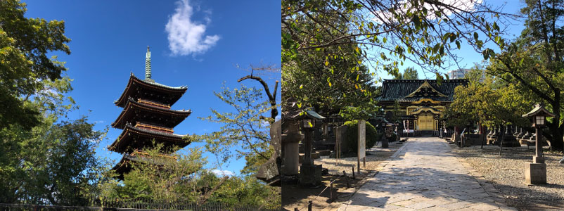 Two photos of Ueno Park